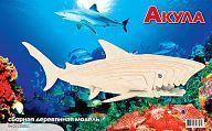 """Сборная деревянная модель """"Акула"""""""