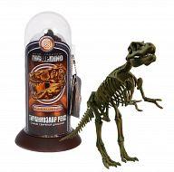 """Набор """"Тираннозавр Рекс. Скелет самого свирепого динозавра"""""""
