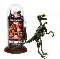 """Набор """"Велоцераптор. Скелет динозавра-быстрого охотника"""""""